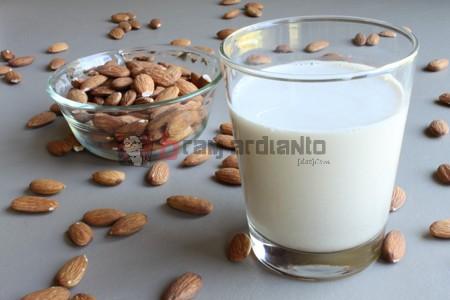 Susu Almond, Manfaat Susu Almond, Cara Membuat Susu Almond