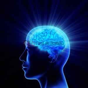 Memori, Daya Ingat, Meningkatkan Daya Ingat, Cara Meningkatkan Ingatan