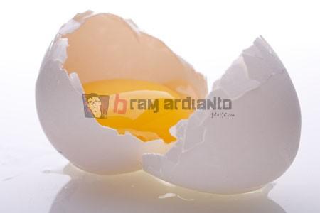Telur, Telur Mentah