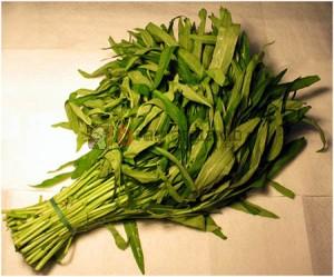 Kangkung, Manfaat Kangkung, Nutrisi Kangkung, Gizi Kangkung