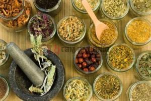 herbal. ramuan herbal, obat alami, ramuan mencegah sakit