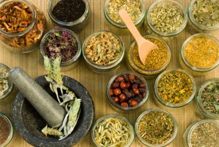 maag, obat maag, herbal untuk maag, obat alami maag