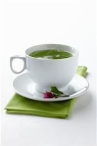 kelor, daun kelor, teh daun kelor, manfaat teh kelor, khasiat teh kelor