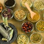 herbal, herbat untuk kanker