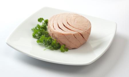 tuna, ikan tuna, manfaat ikan tuna, khasiat ikan tuna