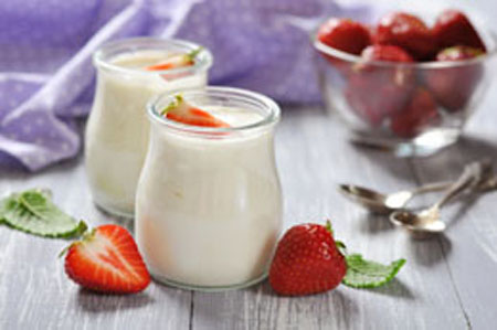 probiotik, makanan probiotik