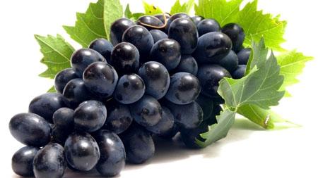 anggur hitam, manfaat anggur hitam, khasiat anggur hitam