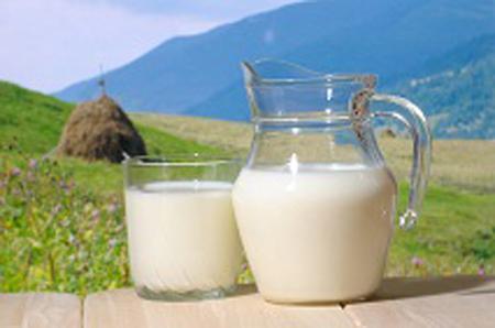 susu kambing, manfaat susu kambing