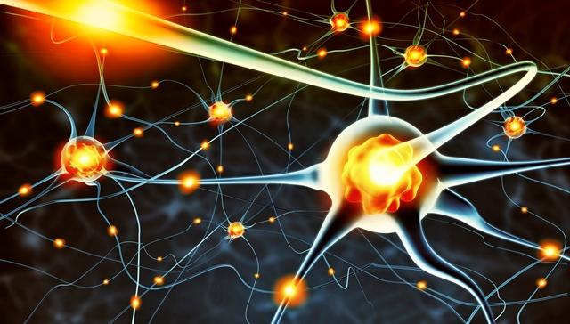 serotonin, apa serotonin