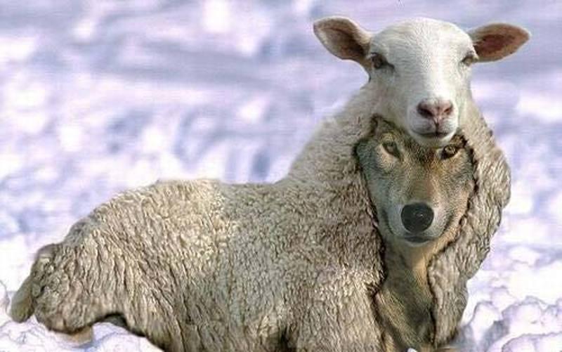 perilaku manipulatif, mengenali perilaku manipulatif, mengidentifikasi perilaku manipulatif