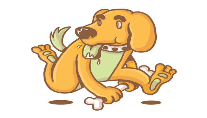 shio anjing, sifat shio anjing, karakter shio anjing