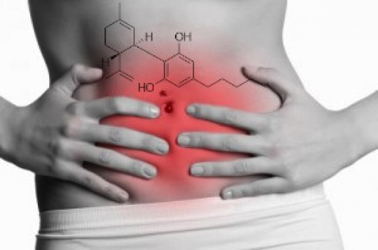 sindrom kebocoran usus, gejala kebocoran usus, penyebab kebocoran usus, tanda usus bocor, ciri ciri usus bocor