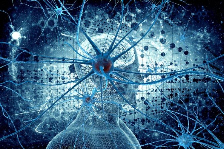 kesadaran, kesadaran gcs, kesadaran dalam psikologi, berada dalam kesadaran tts, pengertian kesadaran menurut para ahli, pengertian kesadaran berbangsa dan bernegara, tingkat kesadaran manusia, apa itu bela negara, macam-macam kesadaran